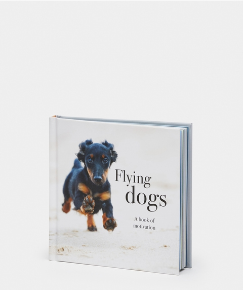 Flying Dogs Book