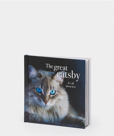 The Great Catsby Book