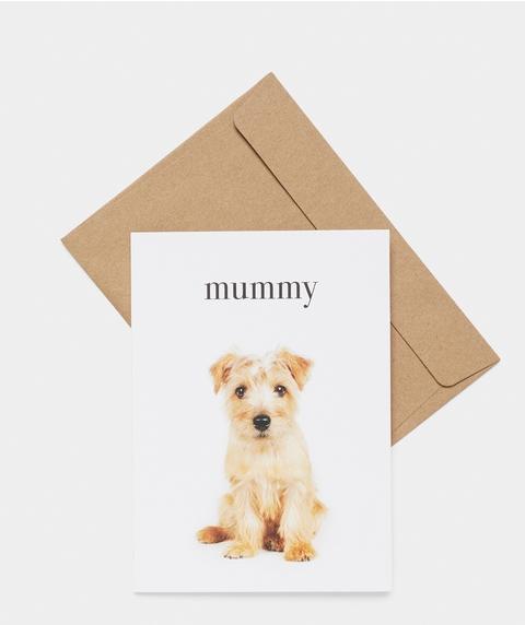 AG MUMMY CARD